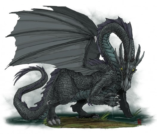 Black-Dragon_900
